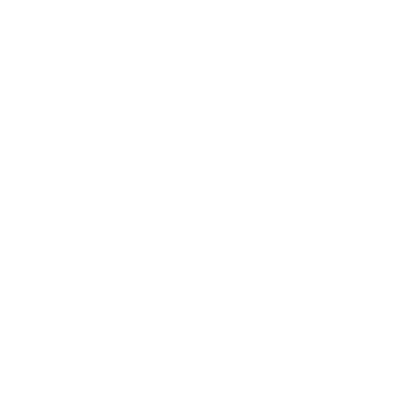 SCHOOL OF POLITICAL HOPE